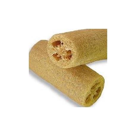 éponge-végétal-luffa-graines