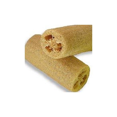 sponge-luffa-cylindrica-seeds
