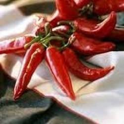 pimiento-espelette-semillas
