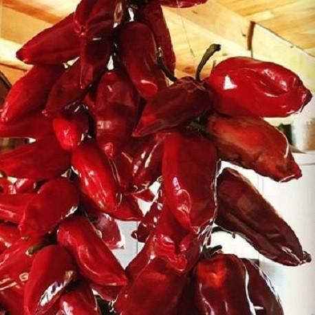espelette-pepper