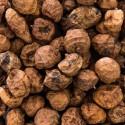 Cyperus esculentus TIGER NUTS, CHUFA SEDGE (10 tuber, seeds)